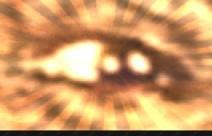 20120806-190344.jpg